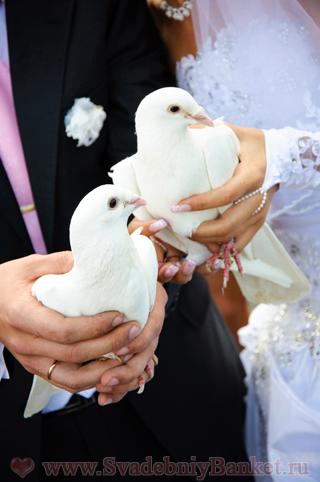 Молодожёны и белые голуби